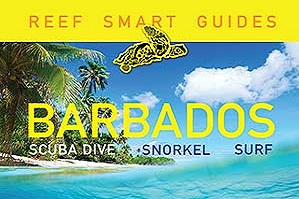 Reef Smart's Barbados dive and snorkel guide receives glowing review by Scuba Diving Magazine