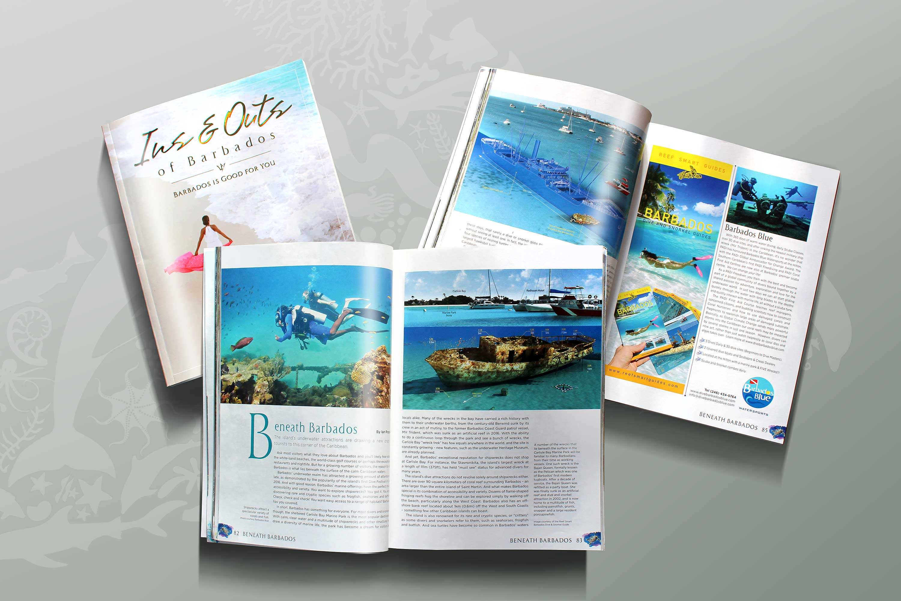 Ins and Outs of Barbados features Reef Smart Guides