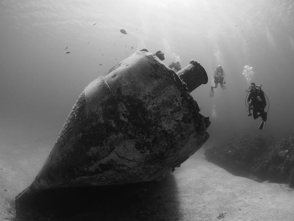 Reef Smart Guides begins partnership with Aggressor Liveaboards