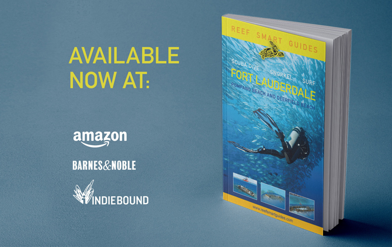 Our Fort Lauderdale books are now available!!